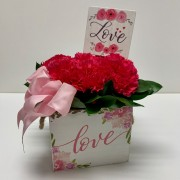 Simply Love Carnation Box