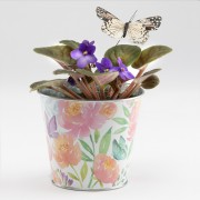 Violet Butterfly Planter