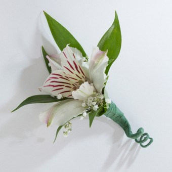 Single Alstroemeria Boutonniere