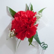Single Carnation Boutonniere